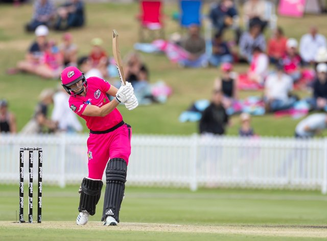Ellyse Perry has been in scintillating form in the WBBL (PA Images)