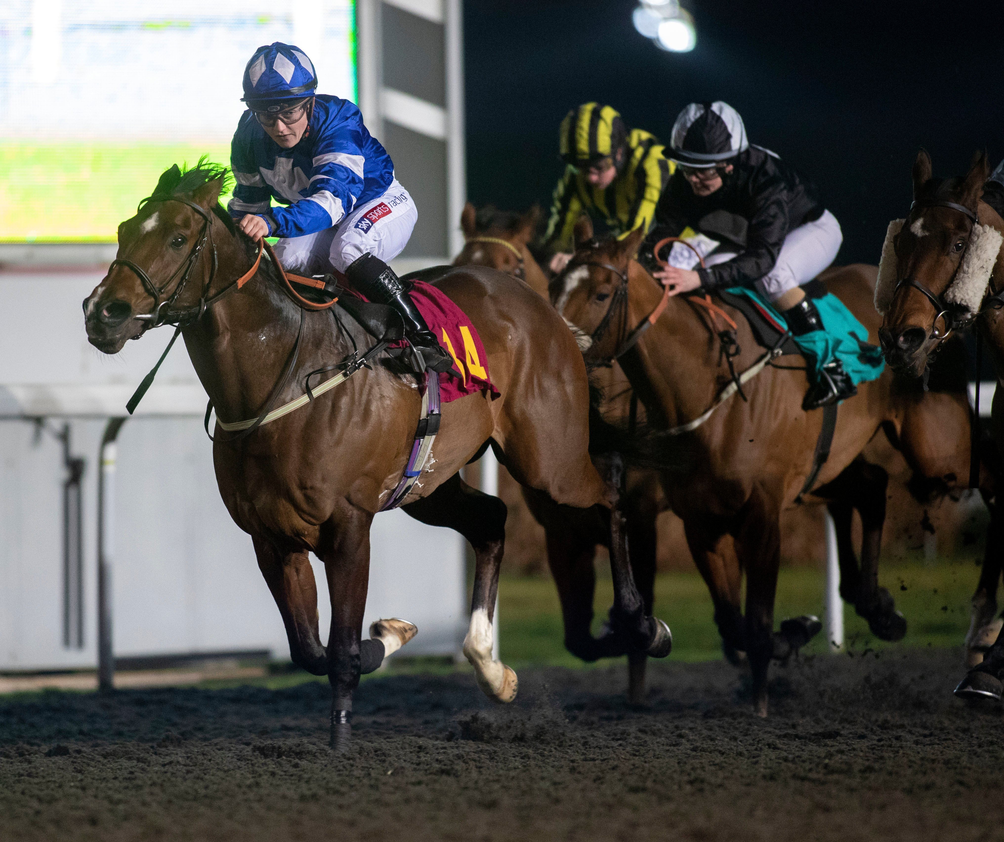 Hollie Doyle breaks British record for the most winners by a female jockey in a year