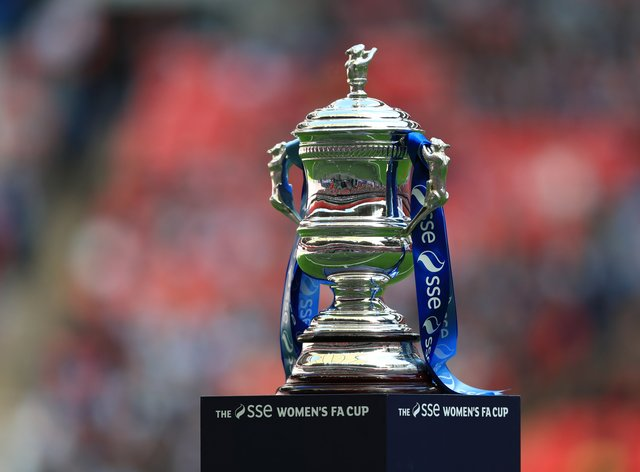 Manchester City are the current holders of the FA Cup (PA Images)