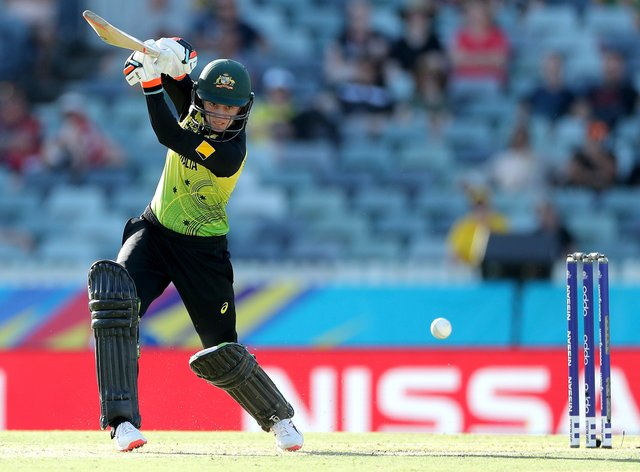 Haynes takes charge as Australia fight back (PA Images)