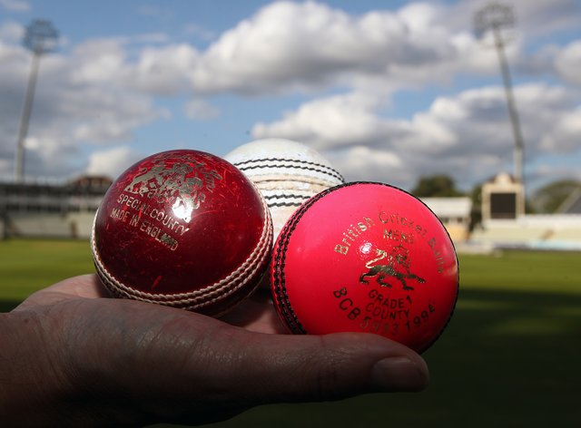 The ECB has suspended all recreational cricket (PA Images)