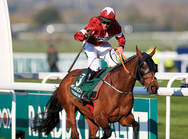 Tiger Roll has won the last two Grand Nationals (PA Images)
