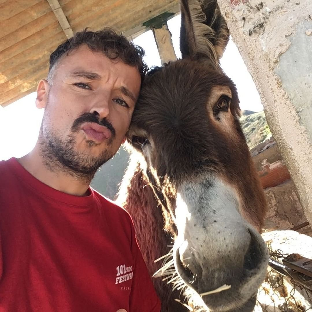 Emotional reunion of Spanish man and his donkey post-lockdown