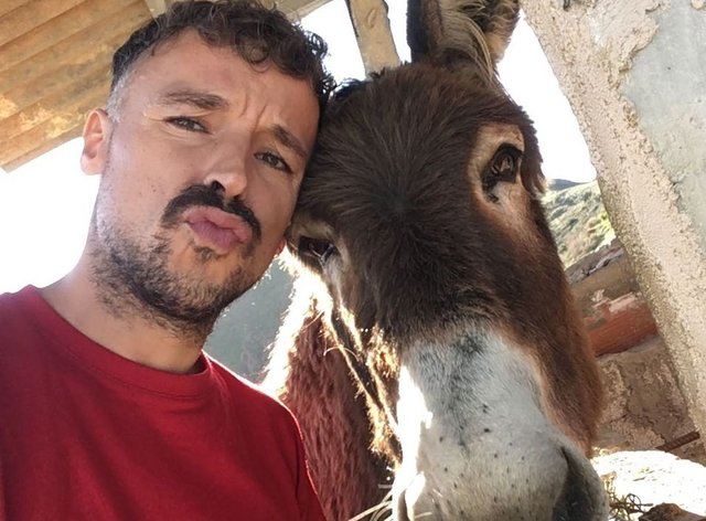 Ismael Fernández reunited with his pet donkey after spending two months apart