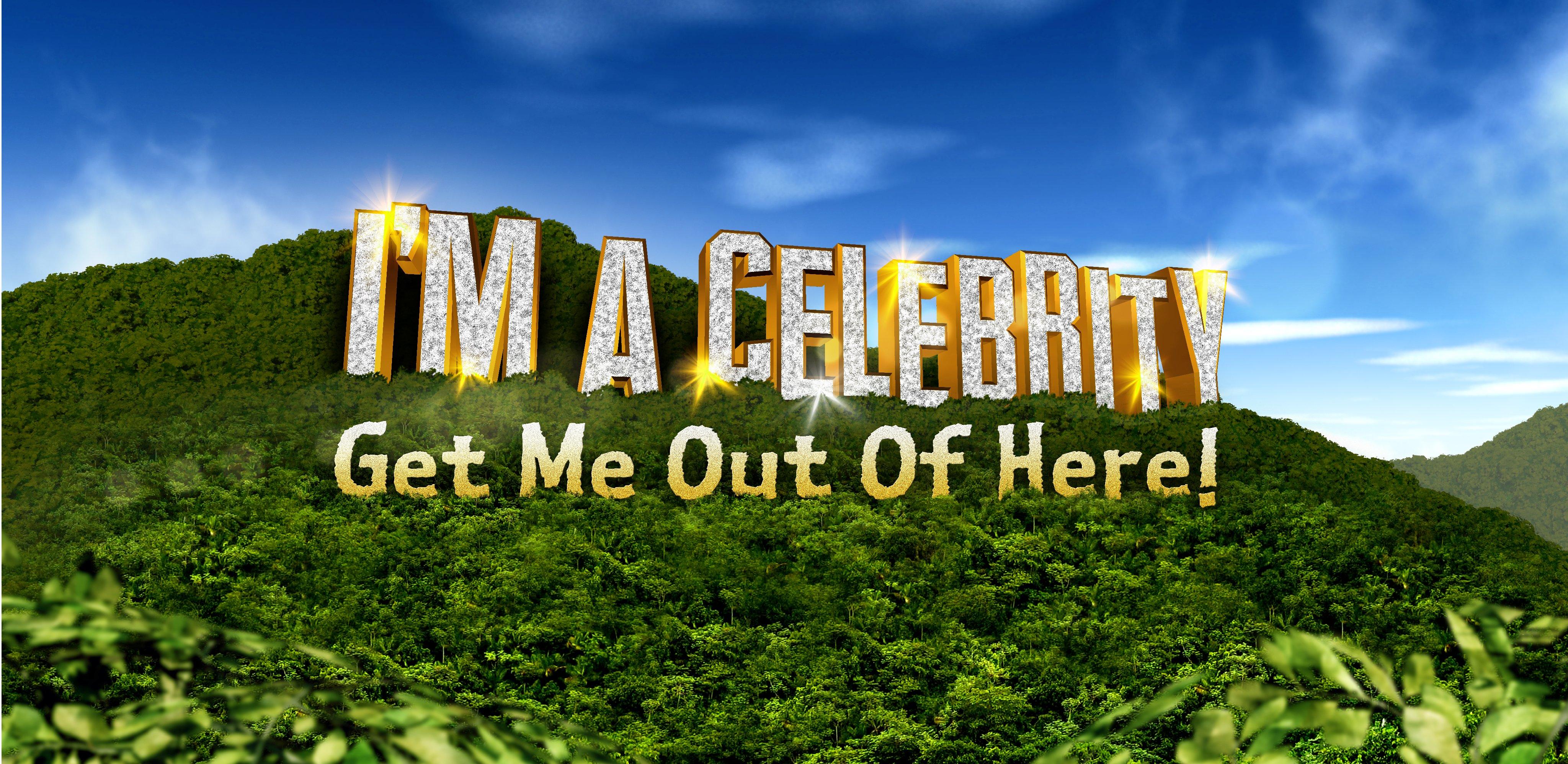 Celebrity - cover