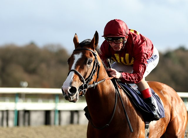 Malotru lines up at Newcastle on Thursday