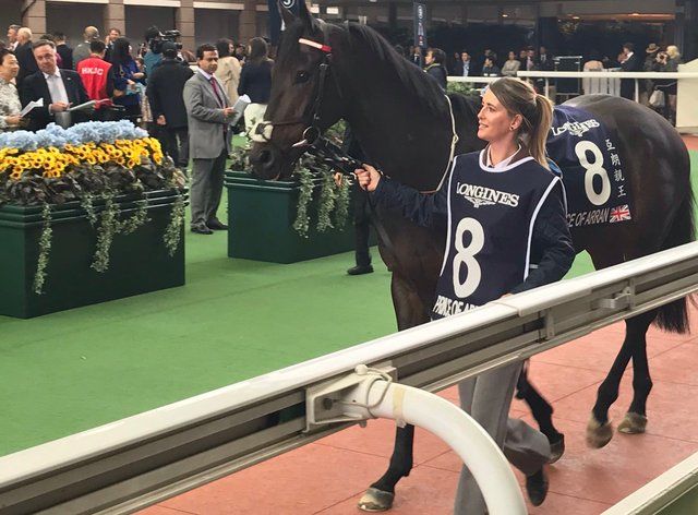 Charlie Fellowes has enjoyed some big days abroad with Prince Of Arran