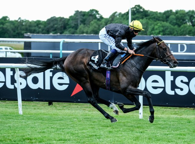 English King rules supreme at Lingfield – and now Epsom beckons ...