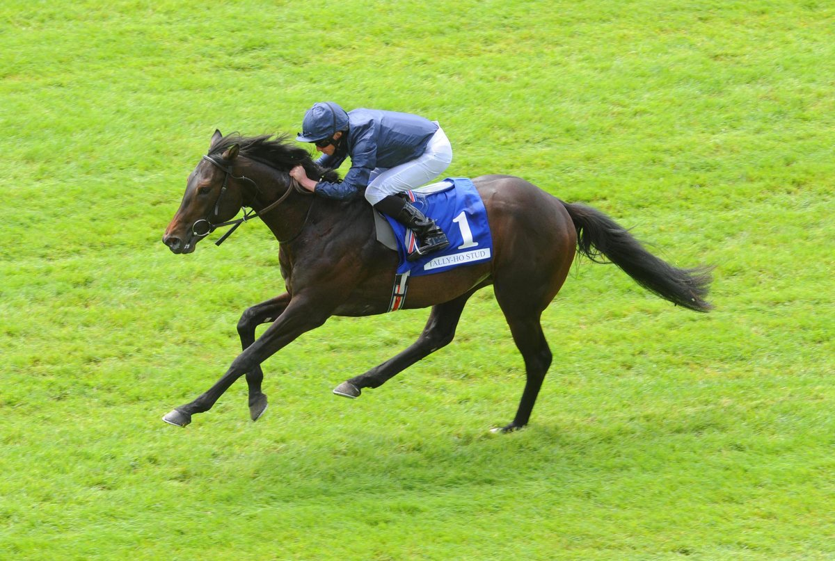 ante post betting 2000 guineas news