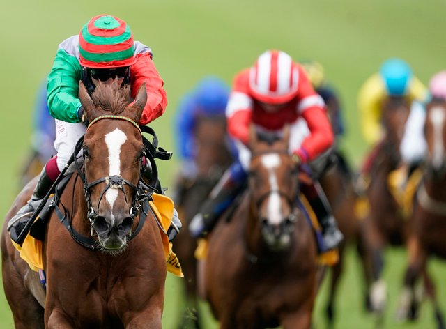 Run Wild did just that at Newmarket