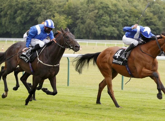 Lord North just holds on from Elarqam