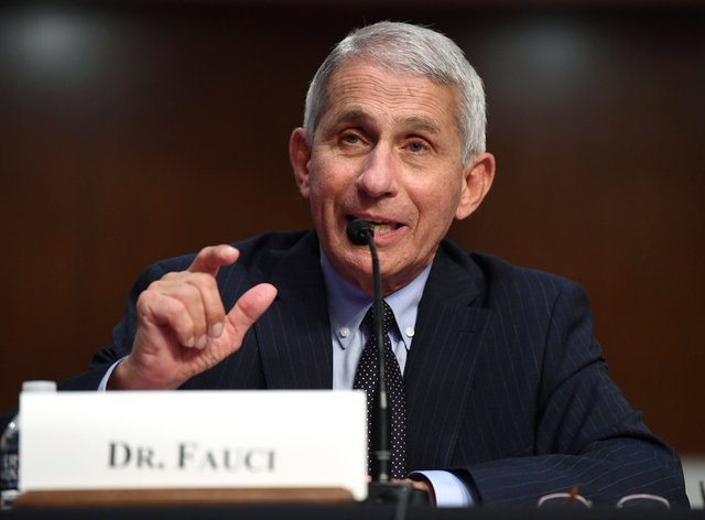 """""""We've got to get the message out that we are all in this together,"""" says Dr Anthony Fauci"""