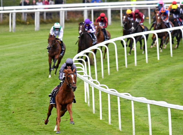 Serpentine led the field a merry dance at Epsom