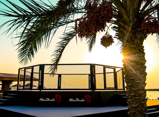 Fight Island will host four UFC events in July