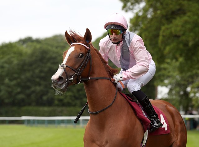 Royal Intervention is on a recovery mission at York