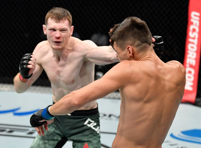 Irish Ufc Fighter Joe Duffy Who Beat Conor Mcgregor Announces Retirement After Falling To Pieces Newschain Duffy shot on a double, alvarez commits to the guillotine to defend and gets the submission. irish ufc fighter joe duffy who beat