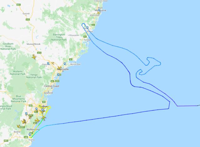 The kangaroo logo flight path