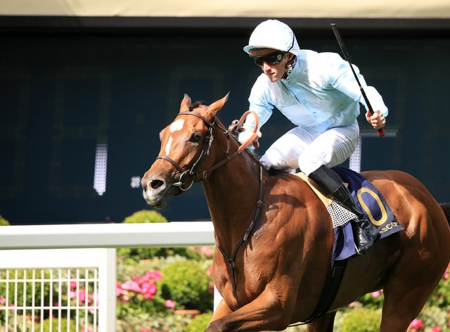 Watch Me is the likely favourite for the Prix Rothschild