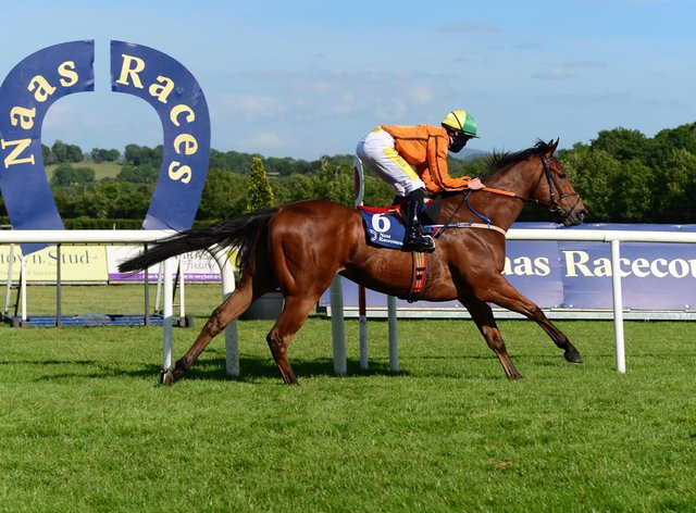 Sceptical on the way to victory at Naas