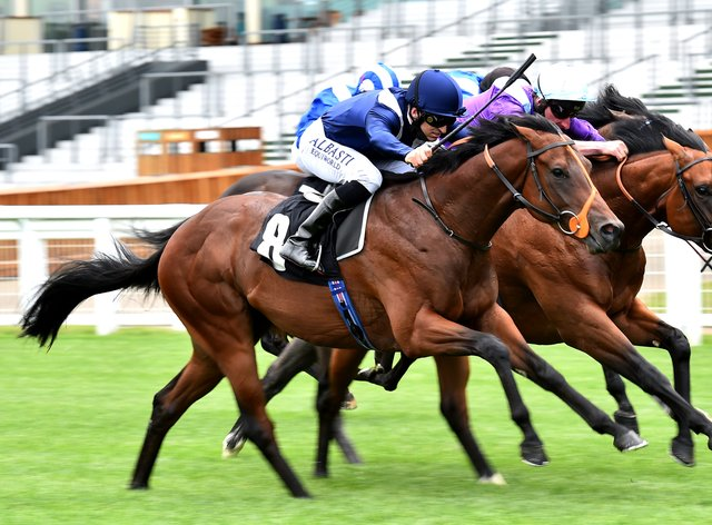 Mohawk King could line up in the Al Basti Equiworld Dubai Gimcrack Stakes at York on his next start