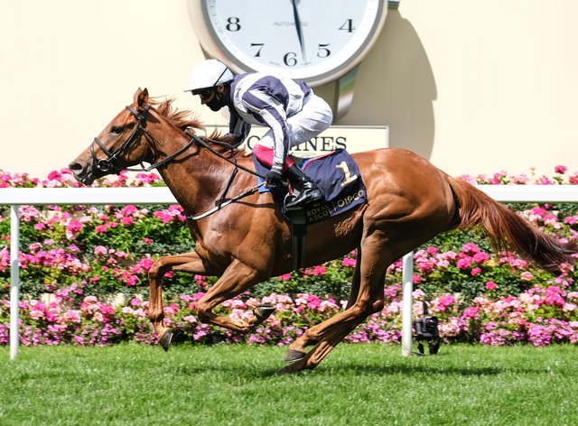 Alpine Star is set to head to France