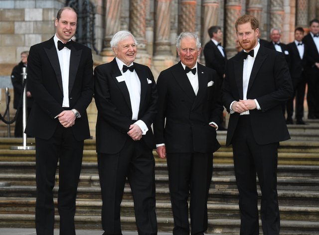 The Duke of Cambridge and Duke of Sussex, pictured at a premiere with the Prince of Wales and Sir David Attenborough, blow 'hot and cold' with their father, a new book claims. Kirsty O'Connor/PA Wire