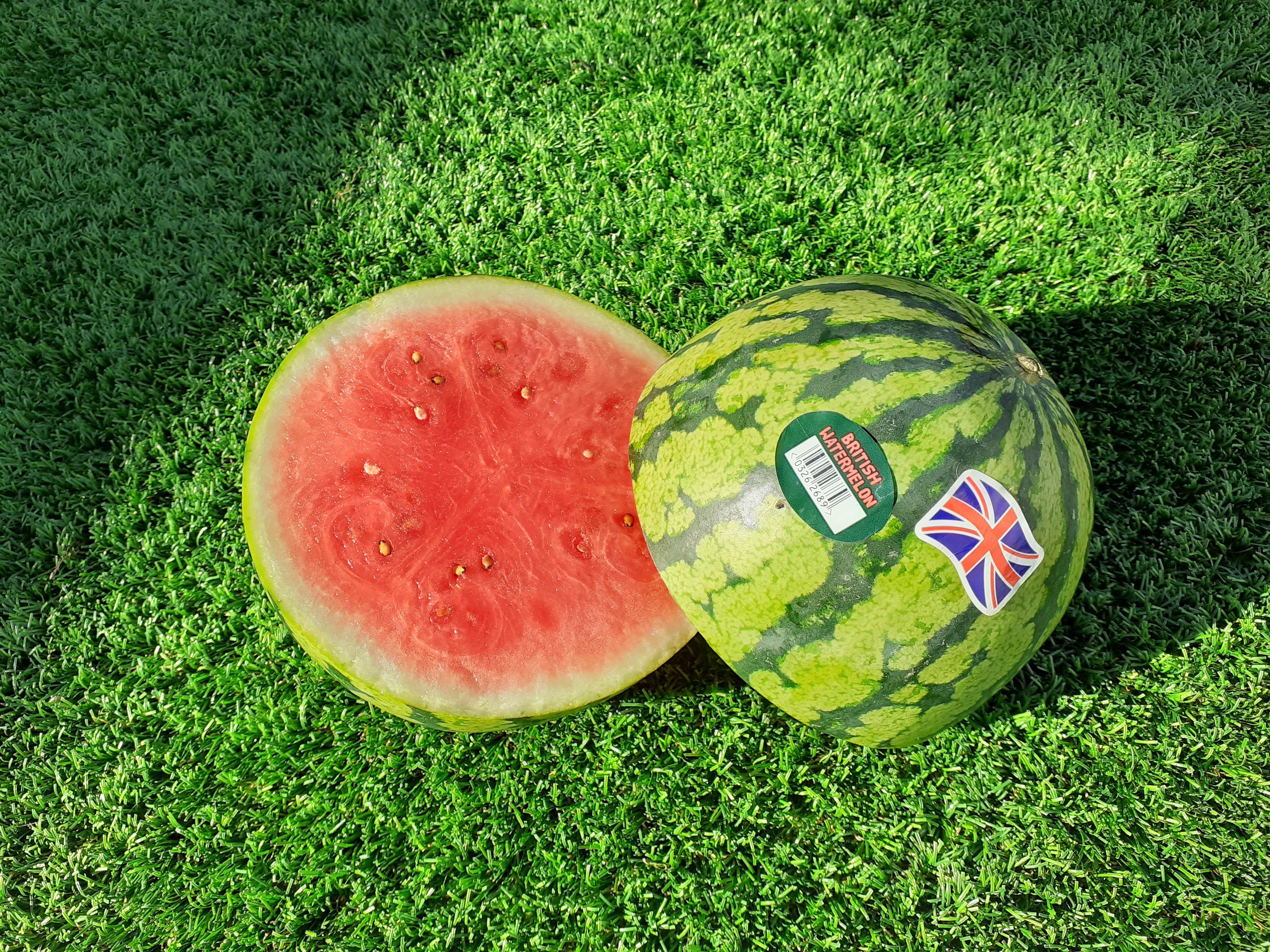Heatwave helps bumper watermelon crop at British farm