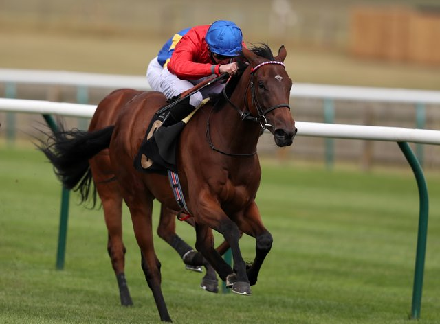 Sacred is a leading fancy for the Lowther Stakes at York