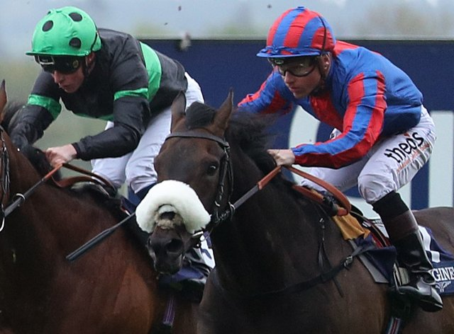 Prince Of Arran (right) has been entered for the Melbourne Cup again