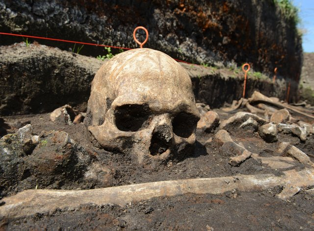 Bronze Age skull in the Tollense valley