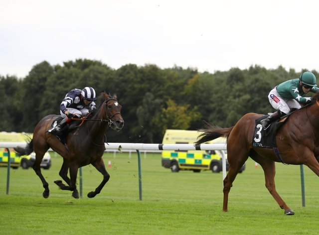 Extra Elusive bids for a third successive Group Three prize at Newbury