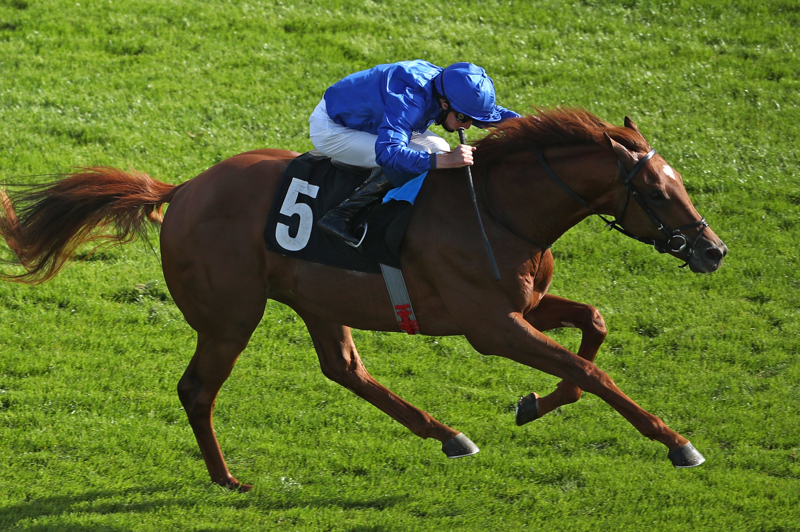 Yibir makes all for conditions glory at Newbury