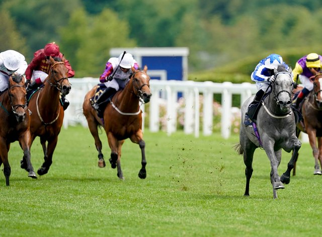 Art Power (grey horse) is set to run on Qipco Champions Day at Ascot