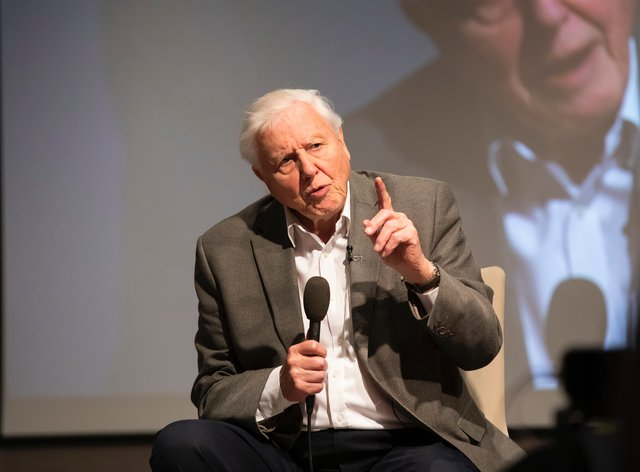 It took Attenborough just a few hours to reach one million followers on the social media site