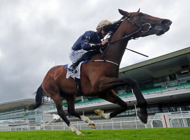 Champers Elysees goes for a second Group One win at Newmarket