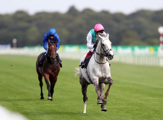 Logician enjoyed an easy comeback at Doncaster
