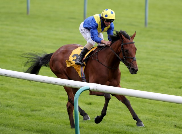 Favorite Moon will run at York this weekend