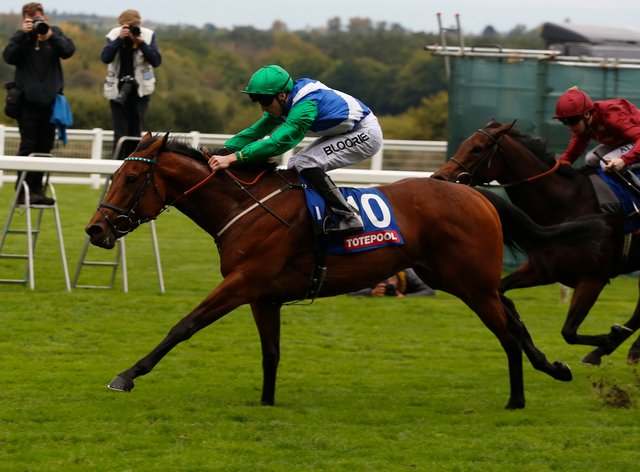 One Master has been a star for William Haggas