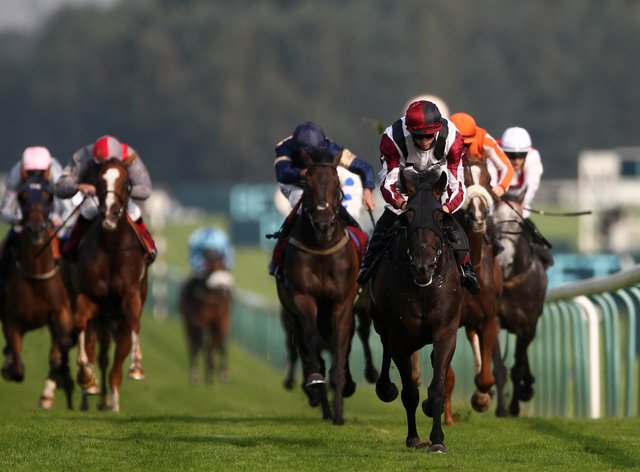 Leoncavallo heads for the Cesarewitch