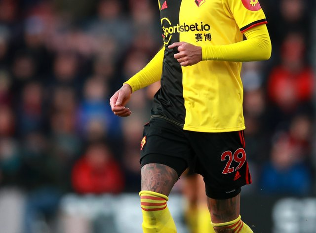 Watford's Etienne Capoue has returned to training this week, according to manager Vladimir Ivic