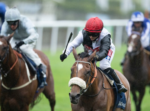 Dame Malliot is on track to bid for Group One honours at Ascot