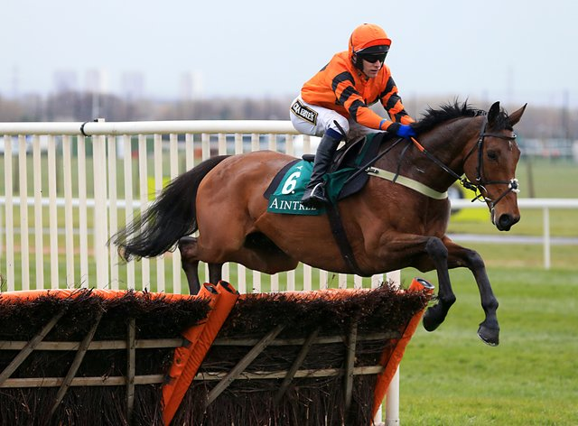 Thistlecrack will be back for more this season at the age of 12