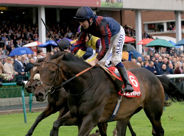 The Tin Man runs in the Bengough Stakes at York