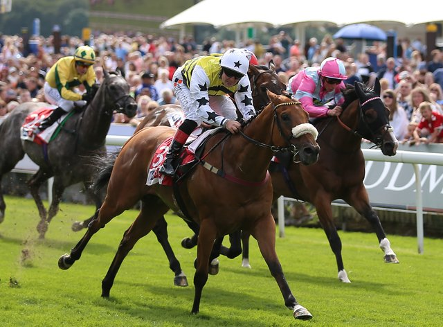 Dakota Gold won at York for the fifth time
