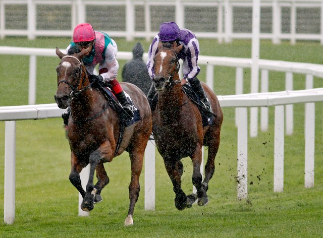 Enable on the way to winning a third King George