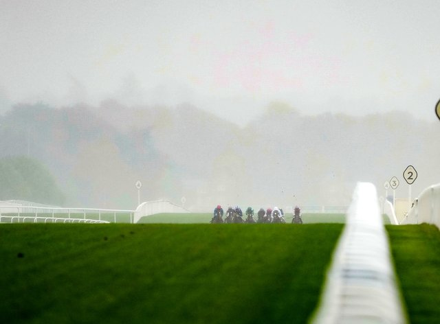 Soft ground expected for Champions Day