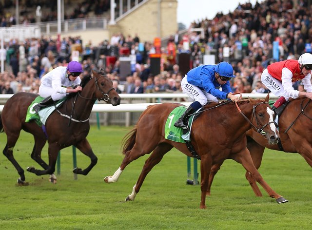 Earthlight (centre) has been retired