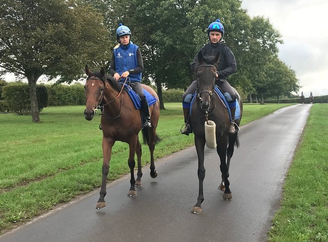 Wonderful Tonight, right, who could head to Ascot on Saturday