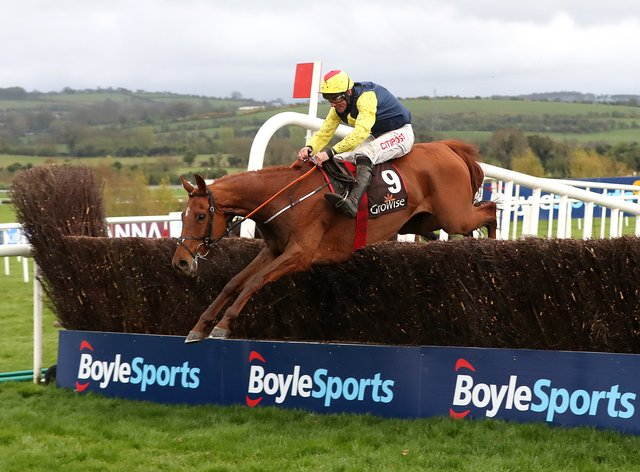 The Storyteller is one of four runners for Gordon Elliott in the feature event at Punchestown on Wednesday
