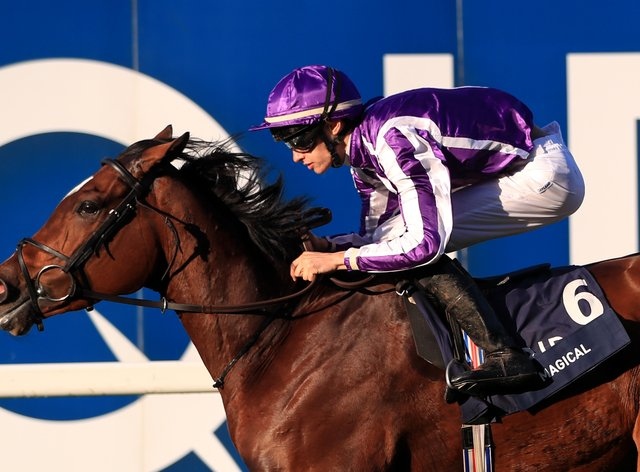 Magical is set to head Aidan O'Brien's squad on Qipco British Champions Day at Ascot
